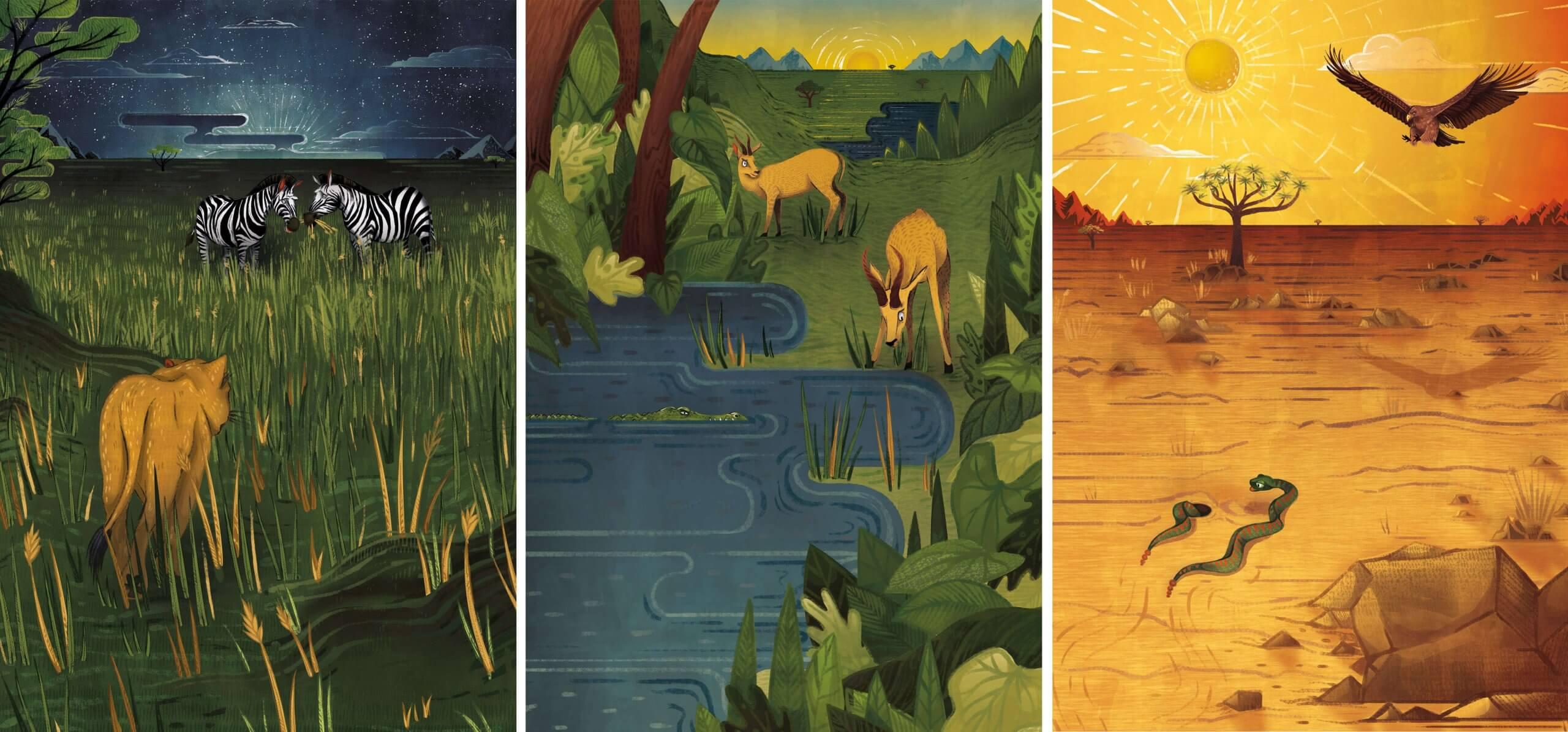 aurora creative studio graphic design illustration cape town portfolio nature valley