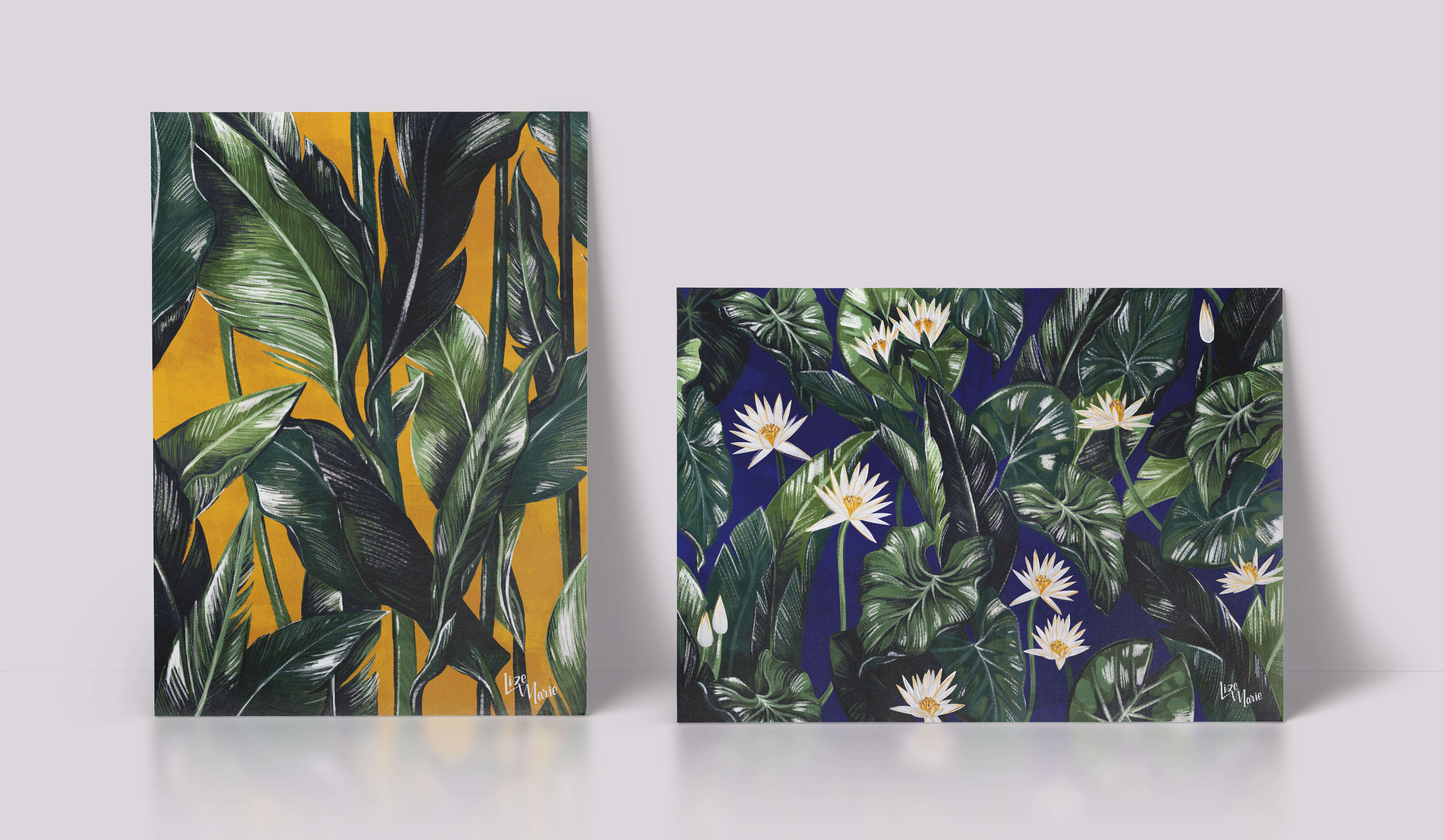 aurora creative studio graphic design illustration cape town portfolio botanical