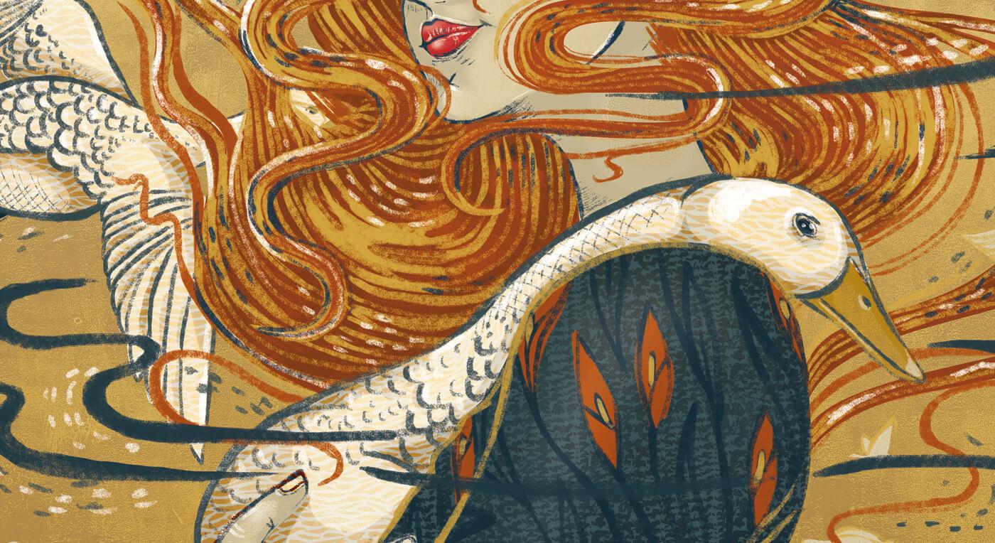 aurora creative studio graphic design illustration cape town portfolio festifeel